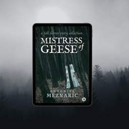 Cover reveal – Mistress of Geese!